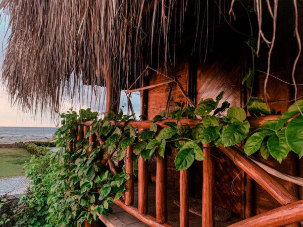 Kite Eco House2